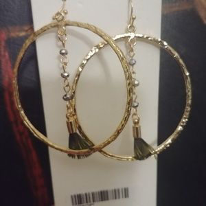 Express Hoop earrings